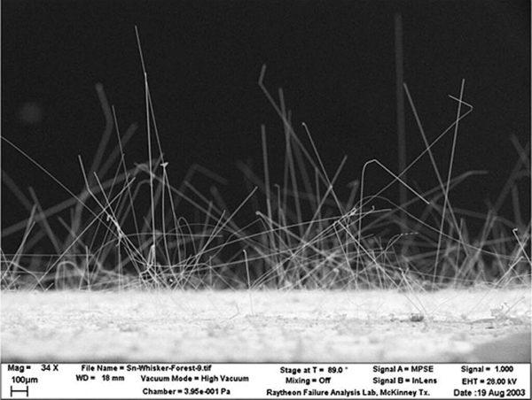 Этот лес оловянных усов был выращен на тестовой пластине во время совместных с CALCE (University of Maryland) испытаний, проводимых NASA в 2003 году. Длина большего количества усов превышает 1 мм
