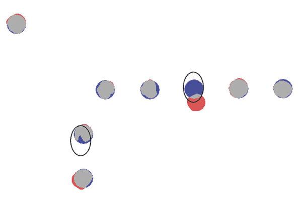 Наложение векторного эталона