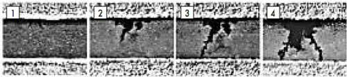 Стадии роста металлических дендритов: 1 — 2 мин; 2 — 2,5 мин; 3 — 3 мин; 4 — 4 мин