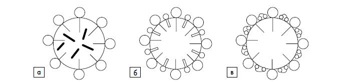 Солюбилизация различных веществ в мицеллах сферической формы
