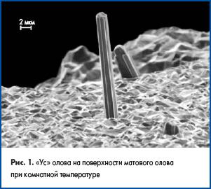 «Ус» олова на поверхности матового олова при комнатной температуре