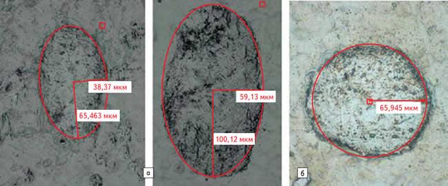 Сравнение типичных отпечатков контакта после одноразовой нагрузки: а) гнездового контакта контактной силой в 1 Н; б) поверхности контактного штифта силой в 5 Н