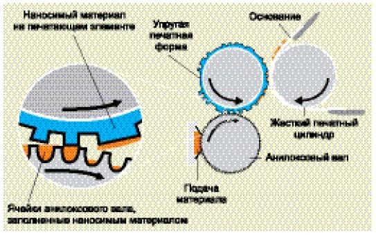 Схематическое изображение процесса флексографской печати