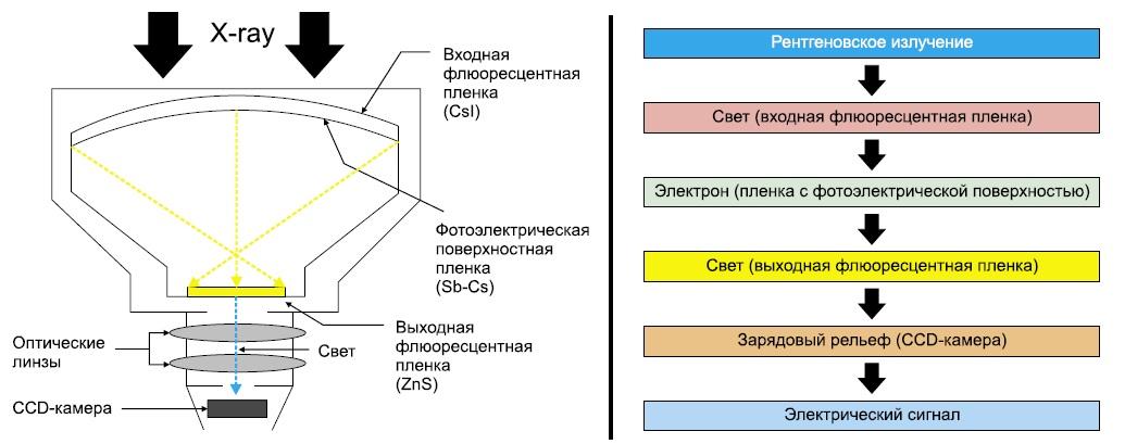 Схема устройства ЭОП