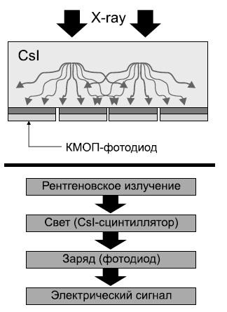 Схема устройства КМОП-детектора