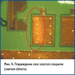 Повреждение слоя золотого покрытия (светлая область)