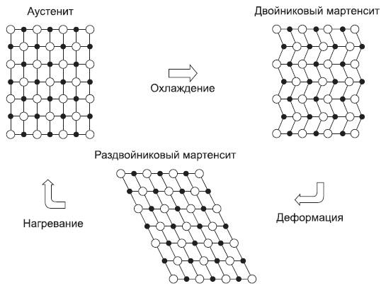 Механизм эффекта памяти формы